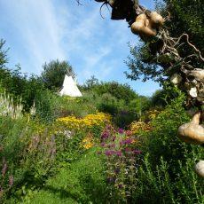 NaturgartenScheidl_Garten