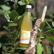 flasche-makava-mate-strauch