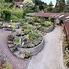 GartenparadiesPainer_Schaugarten
